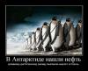 v-antarktide