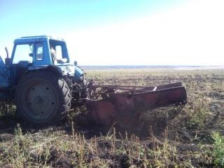 traktor-kartoshka1