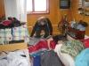 2009_03_08_s_utra147.jpg