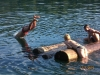 Okunevoe2010-kupanie1